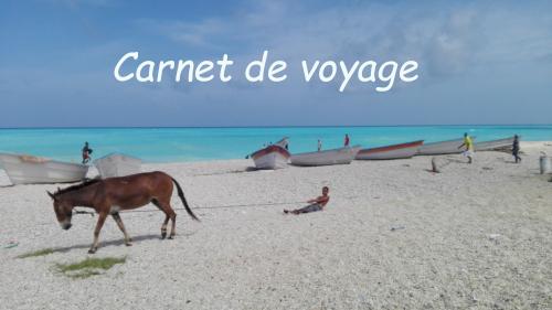 BLOG JeSuiscequeJeSuis-libre  Carnet de voyage  © Catherine Pizzol