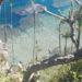 Péninsule de Samaná © Catherine Pizzol Blog Je Suis ce que Je Suis -libre