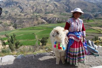 Vallée du Colca Pérou  L'importance du voyage Blog Je Suis ce que Je Suis-libre © Catherine Pizzol