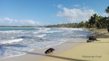 Playa Cosón République dominicaine Les voyages  Blog Je Suis ce que Je Suis-libre © Catherine Pizzol