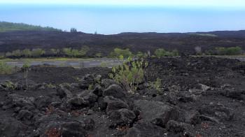 Coulées de laves Île de La Réunion Blog Je Suis ce que Je Suis-libre  © Catherine Pizzol