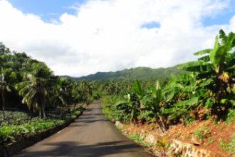 écotourisme Samaná- La Route du café Las Galeras Blog Je Suis ce que Je Suis-libre © Catherine Pizzol
