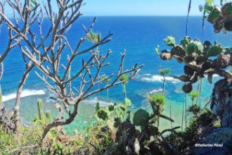 Playa Frotón Las Galeras Blog Je Suis ce que Je Suis-libre © Catherine Pizzol