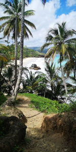 écotourisme Samaná- 7 playas escondidas Las Galeras Blog Je Suis ce que Je Suis-libre © Catherine Pizzol
