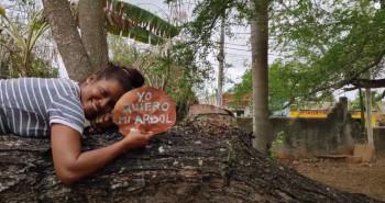 J'aime mon arbre-amo mi arbol - Je Suis ce que Je Suis-libre blog © Gabriella Balsells
